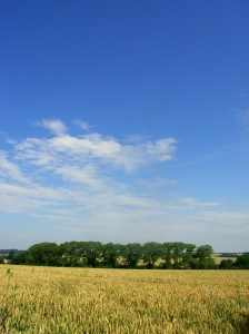 Summer in Rutland (at last)